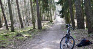 Rower w Wielkopolskim Parku Narodowym